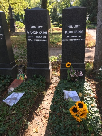 The Family Plots of the Brothers Grimm